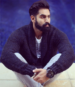 Parmish Verma  Profile| Contact details (Phone number, Email, Instagram)