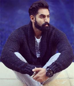 Parmish Verma  Profile| Contact details (Phone number, Email, Instagram)